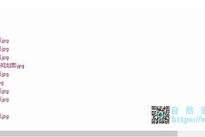 郯城县重坊镇新村一村村庄规划(2019-2035)